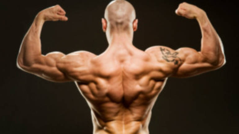The Best Exercises to Strengthen Your Back Muscles