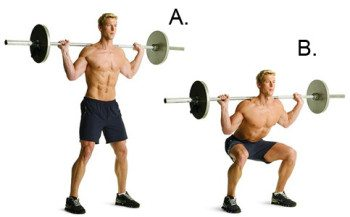 barbell squats for muscle development